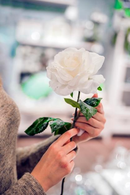 когда вроде редактор фото розы в руке достопримечательности, пляжи