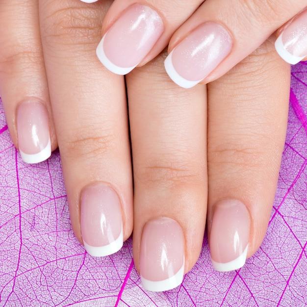 Le unghie della bella donna con bella french manicure Foto Gratuite