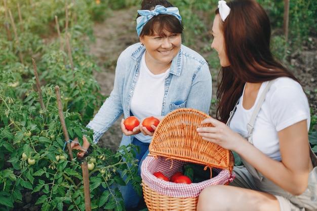 Beautiful women works in a garden Free Photo