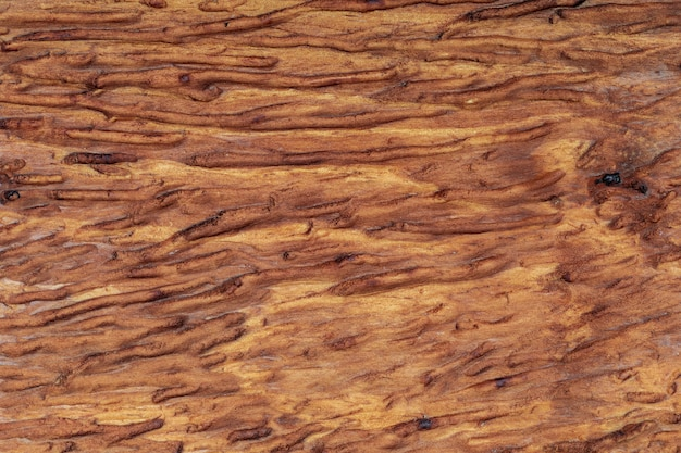 Beautiful wooden background. of rustic aspect and ocher, brown, toasted, golden tones. the veins and knots are appreciated. Premium Photo
