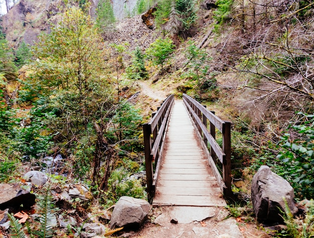 Beautiful wooden bridge in the mountains leading to an adventurous walk Free Photo