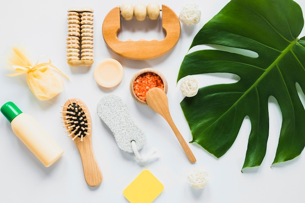 Beautycare concept with palm tree leaf Free Photo