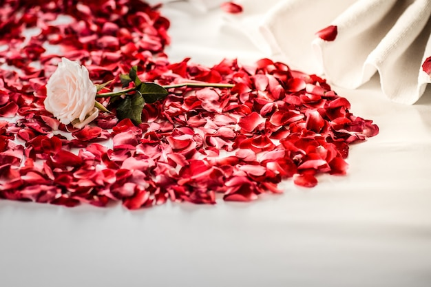 Bedroom bride and groom, luxury bedroom, white linen, white swan, red petal, red heart Premium Photo