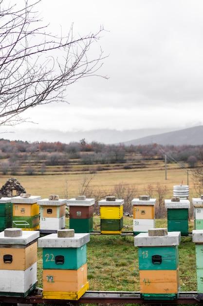 ミツバチはアウトドアカントリーライフスタイルをハイブします 無料写真