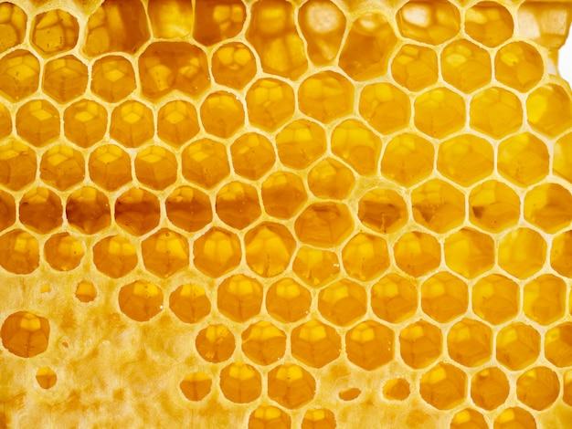 Bee honeycomb closeup, fresh stringy dripping sweet honey Premium Photo