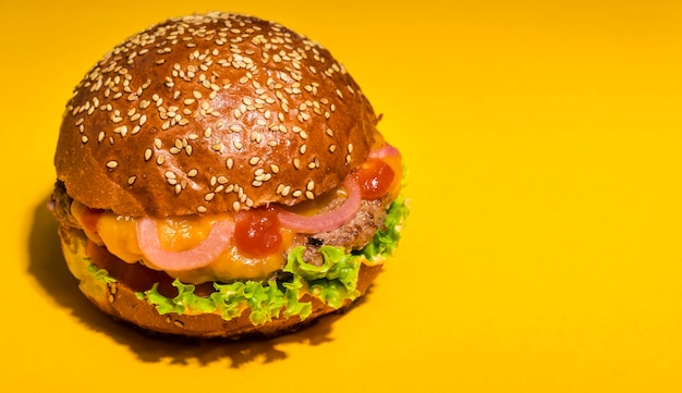 Beef burger with lettuce and tomatoes Free Photo