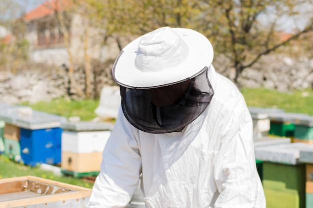 Beekeeper extracting honey Free Photo