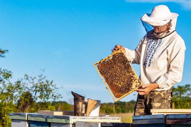 A beekeeper in protective clothing holds a frame Premium Photo