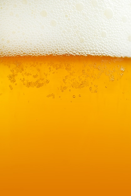 Beer Background Free Photo
