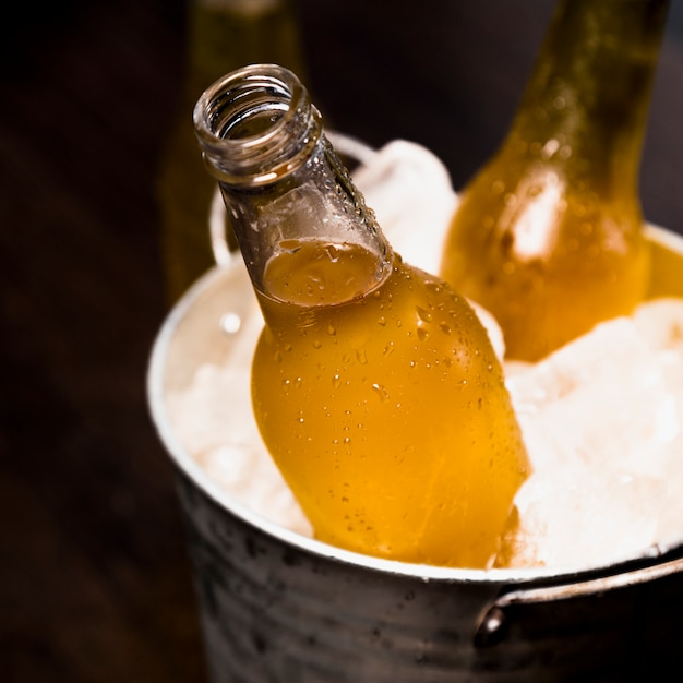 Beer bottle on bucket Free Photo
