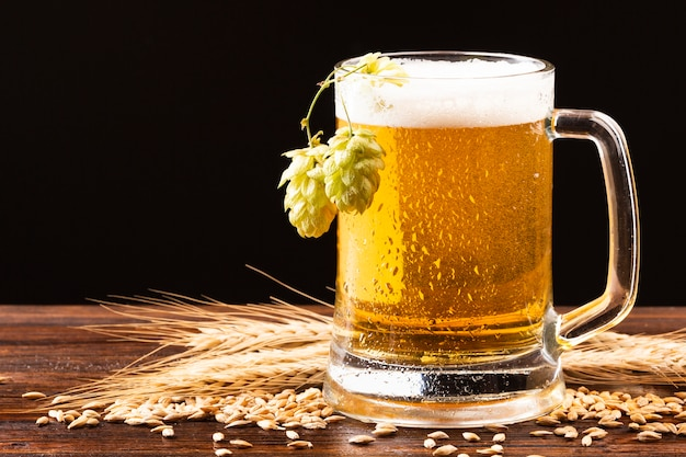 Beer mug with hops on wooden board Free Photo