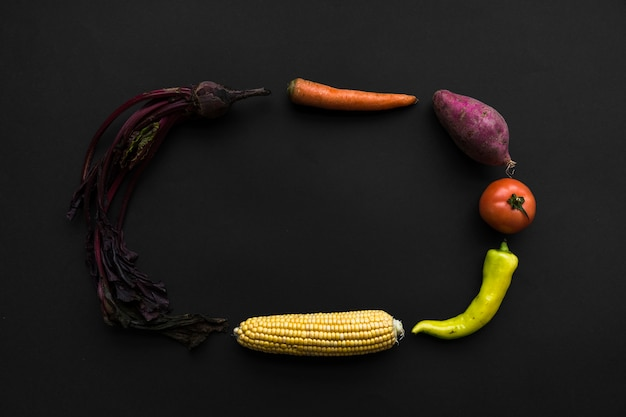 Beetroot; carrot; sweet potato; tomato; green chili pepper and corn cob forming frame on black backdrop Free Photo