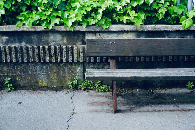 Bench in the public park in the street Premium Photo