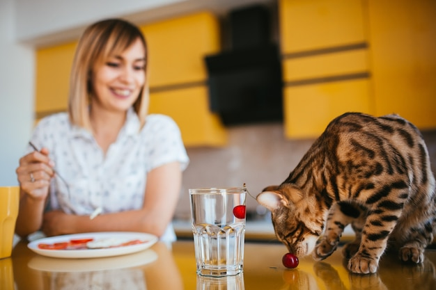 Bengal cat looks at a cherry while it floats in glass with water Free Photo