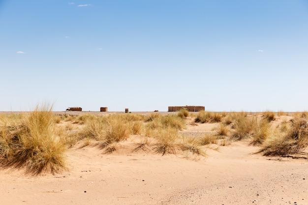 Berber house in sahara desert Premium Photo