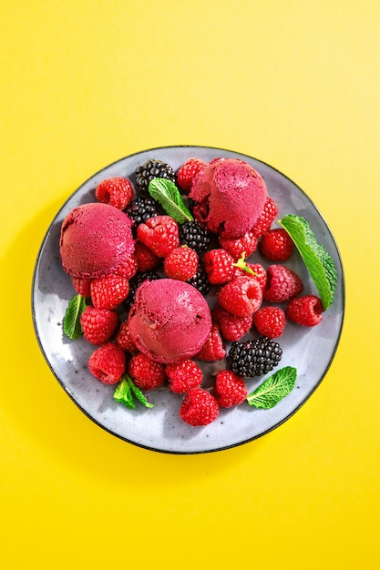 Berry refreshing ice cream scoops on plate Free Photo
