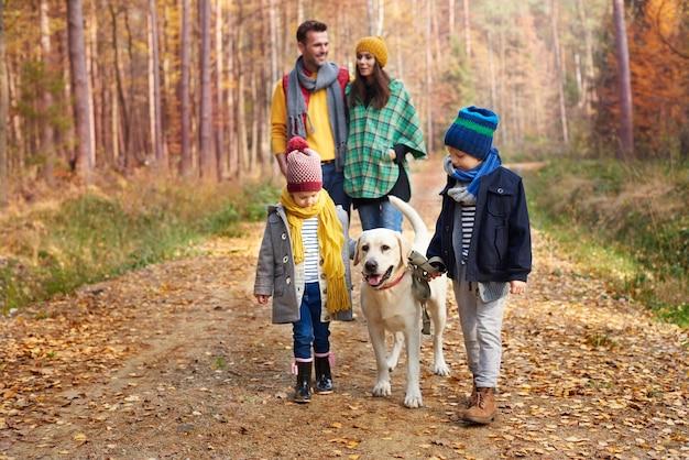 Il miglior amico dell'uomo è un cane Foto Gratuite