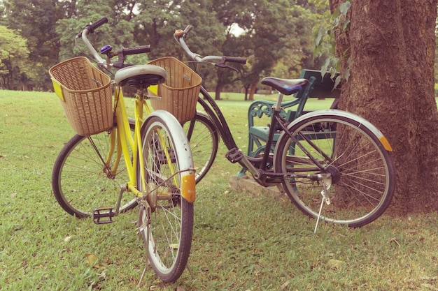 Bicycle in the park. vintage retro effect style pictures. Free Photo