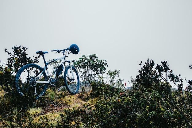 緑の植物の近くに駐車したヘルメット付き自転車 無料写真