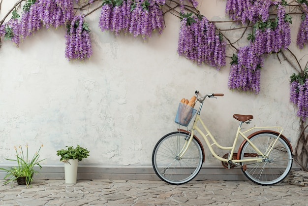 Bicycle with a basket with a bread leaned on the grey background with a purple flowers.- image Premium Photo