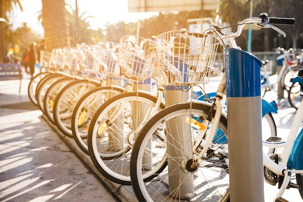 Bicycles stand on a parking for rent in city Free Photo