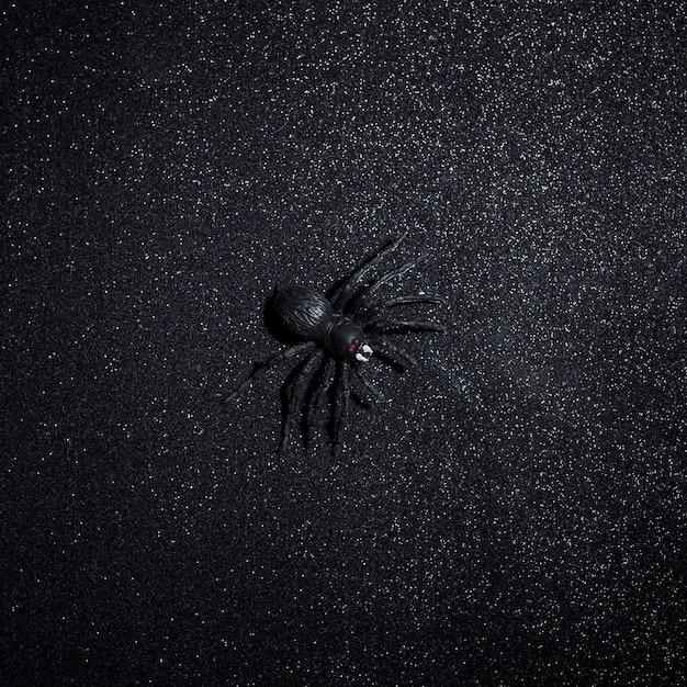 Большой черный паук хэллоуин на фоне темного блеска Бесплатные Фотографии