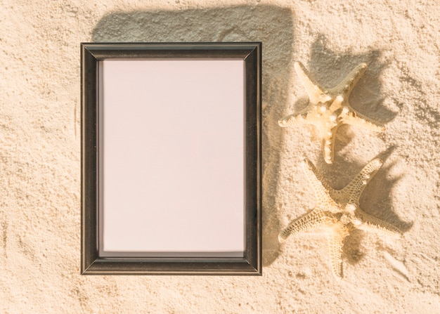 Big black picture frame with starfishes Free Photo
