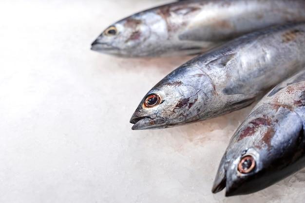 氷の上で新鮮なマグロの生魚 Premium写真