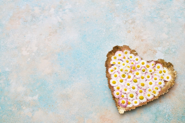 Big heart from daisy flowers on blue pastel background. copy space, top view. holiday background. Premium Photo