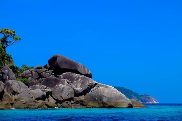 Grandi rocce e alberi vicino al mare con cielo sereno Foto Gratuite
