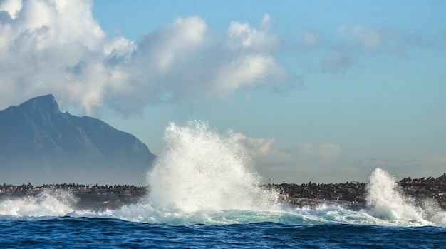 Большие волны разбиваются о скалы в море на фоне береговой линии. Premium Фотографии