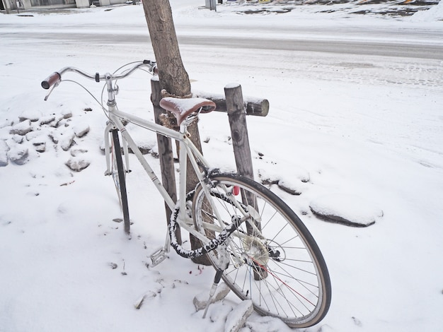 Bike parked next to the tree in the winter Premium Photo