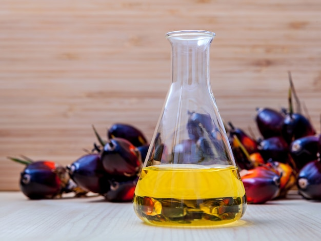 Bio diesel in laboratory glass and red palm fruits . Premium Photo
