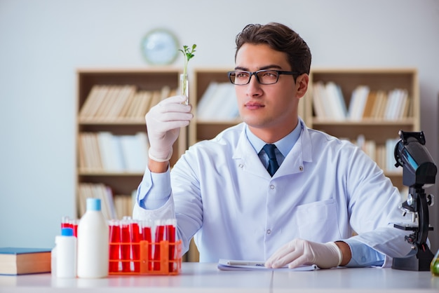 Biotechnology scientist working in the lab Premium Photo