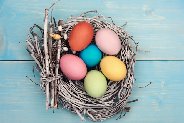 Bird nest fulfilled with pastel color eggs Free Photo
