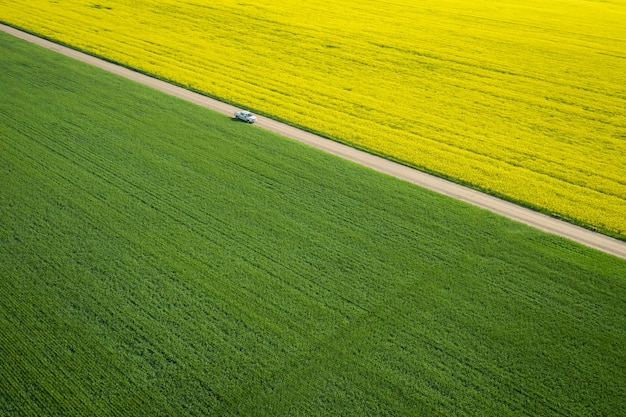 Bird's-eye view of a large field with a narrow road in the middle during a sunny day Free Photo