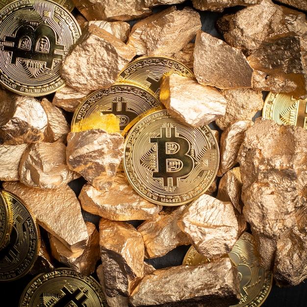 фото биткоин в ракушке