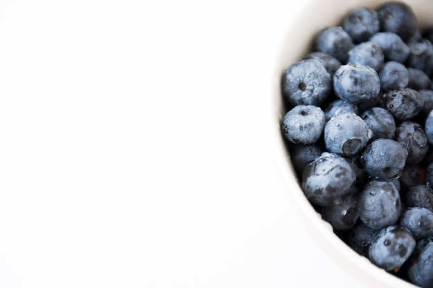 Black blueberries in white bowl isolated on white backdrop Free Photo