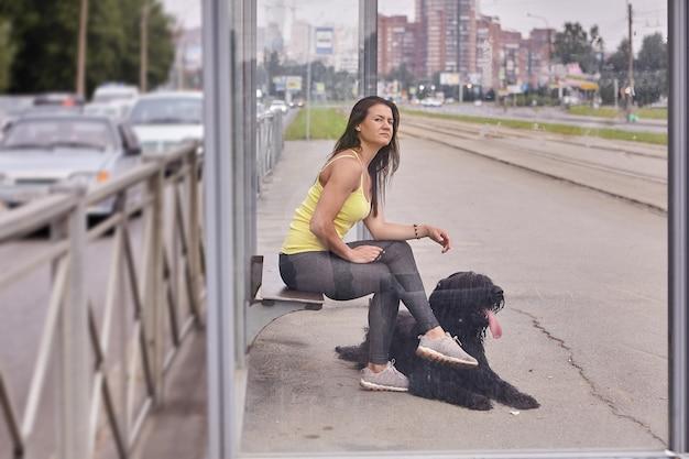 흑인 브리아 드와 여성 주인은 도시 거리의 대중 교통 역에 앉아 트램을 기다리고 있습니다. 프리미엄 사진