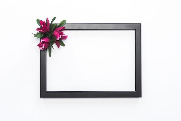 Black frame pink flower white background modern Free Photo