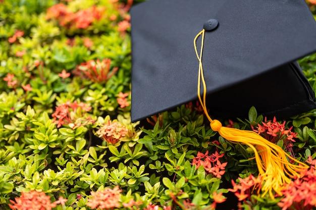 Black graduation hat placed on spike flower Premium Photo