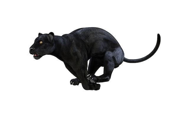 Black panther isolate on white background, black tiger, 3d illustration, 3d render Premium Photo