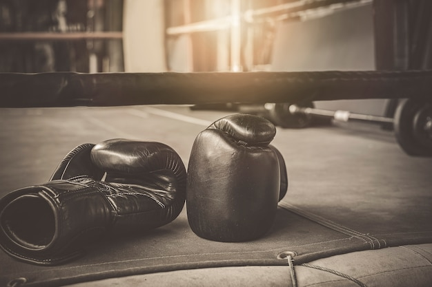 Black practise boxing gloves in the boxing gym Premium Photo