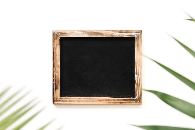 Black slate decorated with palm leaves on white background Free Photo