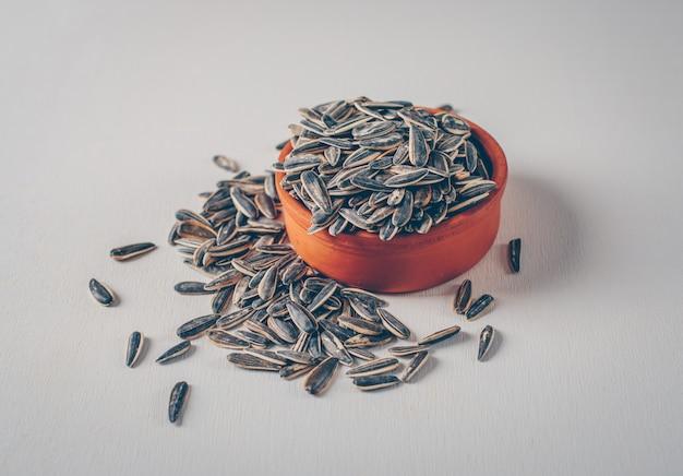 Excesso de sementes de girassol podem causar diminuição da massa muscular