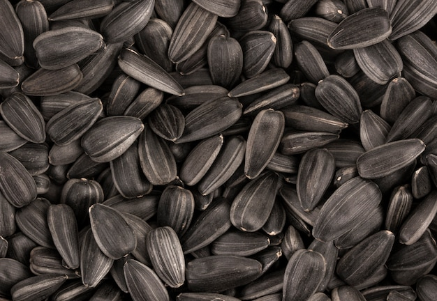 Black sunflower seeds texture or background Premium Photo