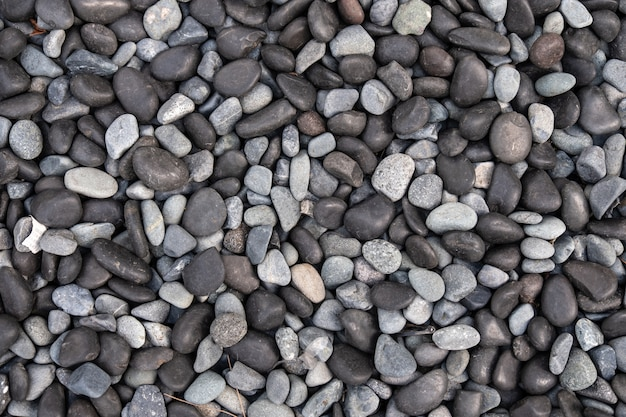 Black and white pebbles for background and texture. rock or stone pebble is sign of spa and zen religion. Premium Photo
