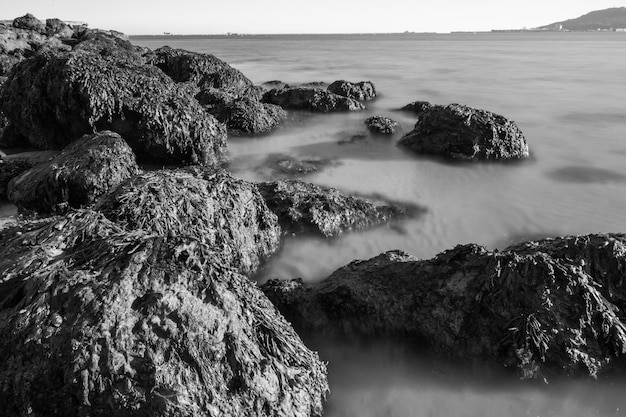 Colpo in bianco e nero delle rocce e del mare molto sfocato dalla spiaggia di sandsfoot nel dorset, regno unito Foto Gratuite