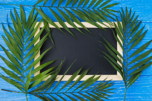 Blackboard and plant leaves on board Free Photo