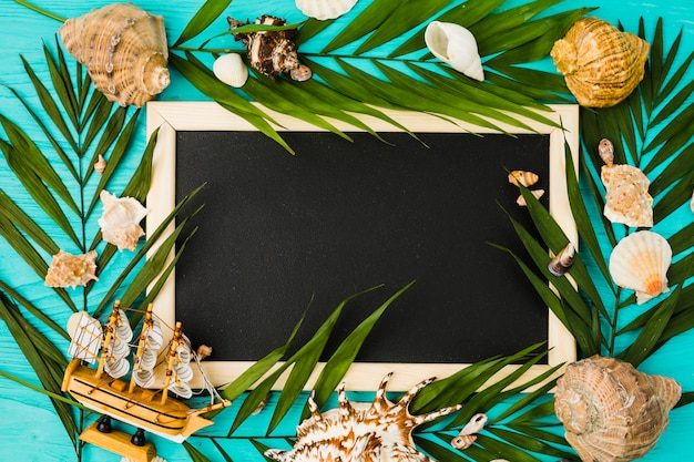 Blackboard and plant leaves with seashells and toy ship Free Photo